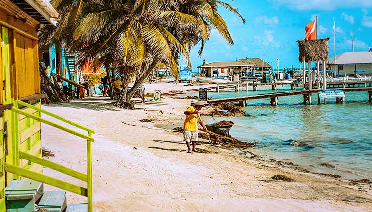 15 best Ambergris Caye, Belize images on Pinterest